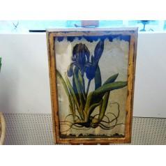Handgjord tavla iris nr1